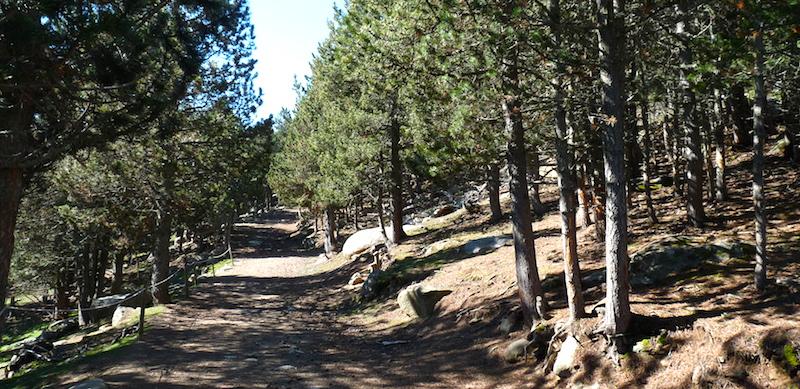 Découverte du parc animalier en vacances à l'Auberge de la Baliu PEP 34 des Angles (Pyrénées-Orientales).