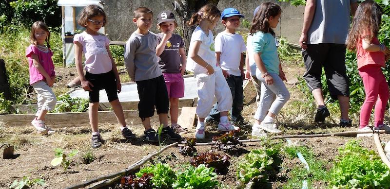 Découverte de l'environnement au centre de vacances de Malibert (Hérault).