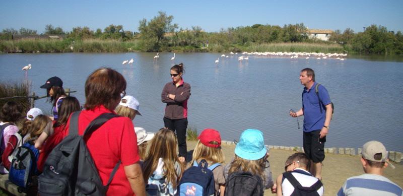 Le parc ornithologique du Pont de Gau à découvrir en colonie de vacances.